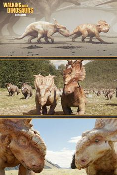 Stand apart from the herd Prehistoric Creatures, Mythical Creatures, Jurassic World, Jurassic Park, Radios, Walking With Dinosaurs, Dinosaur Art, Fossils, Beast