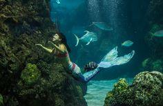 Mermaids-9071