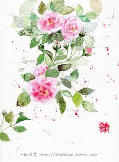 水彩插画——蔷薇-Jessie一颗豆子_原创,水彩,插画,每日一涂,手绘,花卉_涂鸦王国插画
