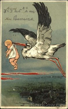 Divided Back Postcard Stork delivering a baby Babies Vintage Greeting Cards, Vintage Postcards, Birth Announcement Boy, Birth Announcements, Baby Stork, Hearty Congratulations, Delivering A Baby, Baby Mine, Baby Drawing