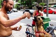 O amor entre moradores de rua e seus cães.