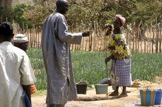 Drawing up water from well. Farmer to Farmer Program, Dladie, Mali, W. Africa.