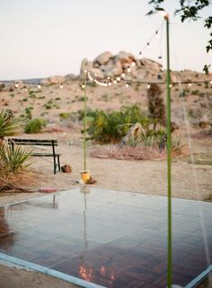 68 Trendy ideas for backyard wedding dance floor middle Tree Wedding, Wedding Day, Wedding Reception, Dessert Wedding, Wedding Shit, October Wedding, Elope Wedding, Wedding Wishes, Budget Wedding