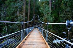 Staircase Loop Bridge -- Olympic national park hikes, easy-med-hard
