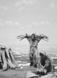 Hiroshi Sugimoto found that photographing stuffed and wax figures of natural history museum dioramas made them seem to come alive. Maybe it's bc we're so used to seeing living things frozen still in photos, that we infuse the inanimate objects of his photos with an assumption of life.