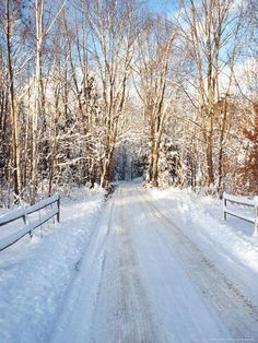 Photographic Print: Winter Road in New England Poster by Bill Bachmann : England Winter, New England, Winter Road, Winter Scenery, Back Road, Winter Beauty, Ways Of Seeing, Yosemite National Park, Find Art