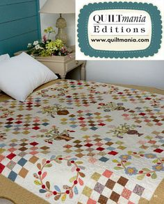 Focus On Appliqué by Irene Blanck QUILTMANIA Eidtions