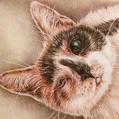 Another custom pencil portrait done! When you look this good, you only need one eye! Order you personalized portrait today! Visit ArtistryByLisaMarie.etsy.com