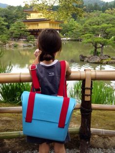 From our testimonial in Tokyo – episode 9:  Meditating in from of the golden pavilion