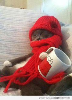 Con mucho frio...
