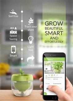 Smart Indoor Herb Gardens : plant app – Famous Last Words Hydroponic Gardening, Aquaponics, Organic Gardening, Gardening Tips, Hydroponic Growing, Water Garden, Herb Garden, Indoor Farming, Vertical Farming