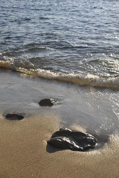 rocs on the beach