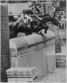 Classic Thoroughbred Show Horses: Betsey Gersen aboard Gang War | The Chronicle of the Horse