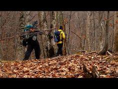 Am ajuns la capătul lumii | Drumeție prin pădure și putin bushcraft Romania - YouTube Hiking Trails, Bushcraft, Romania, Youtube, Youtubers, Walking Paths, Youtube Movies, Camping Survival