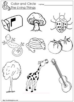 math worksheet : living and non living things worksheets  science  pinterest  : Living And Nonliving Things Worksheets For Kindergarten