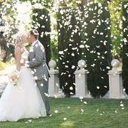 Wedding photography ideas...Petal Posing!