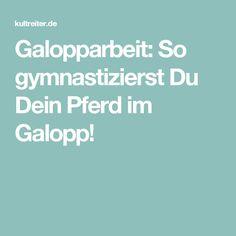 Galopparbeit: So gymnastizierst Du Dein Pferd im Galopp!