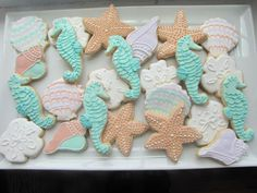 One-Dozen-Decorated-Seashell-Sugar-Cookies-Homemade-seashell-summer-favor