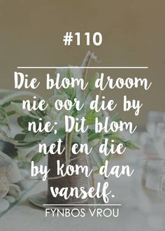 Afrikaans, Beautiful Words, Quotes, Type 3, South Africa, Contrast, Van, Christian, Facebook