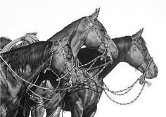 The stages finished bridle horse, two rein horse and a hackamore horse. I would love to have this hanging in my house Horse Drawings, Animal Drawings, Art Drawings, Graphite Drawings, Pencil Drawings, All The Pretty Horses, Beautiful Horses, Horse Artwork, Horse Paintings
