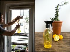 Citrus cleaning solution