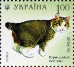 Kurilian Bobtail Cat Cat Pictures For Kids, Funny Cat Pictures, Cat Images Hd, Animals Images, Purebred Cats, Art Postal, Bobtail Cat, Image Cat, Cat Paws