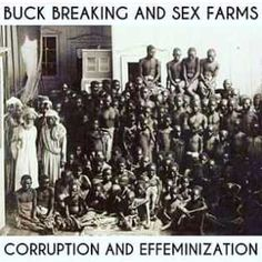 How Male Blacks Were Sodomized By Gay White Masters, During The Slave Trade Da - Literature - Nigeria