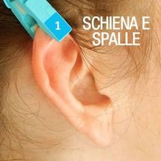 Pain relief as simple as a clothespin on ear reflexology chart Infection Des Sinus, Ear Reflexology, Sinus Pressure, Stomach Problems, Sciatica, Medical Advice, Alternative Medicine, Natural Healing, Health Tips
