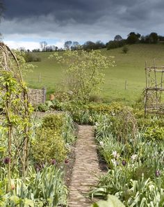 After 10 years of formality in Lincolnshire, the award-winning garden designer   Arne Maynard has taken on a more relaxed project in Monmouthshire