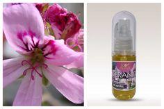 Aceite esencial de geranio. ¡Energía estupenda!