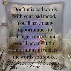 Dont mix bad words with your bad mood. You'll have many opportunities to change your mood, but you'll never get the opportunity to replace the words you spoke.....