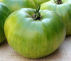Green Giant  Big fruits on potato leaf plants.  Sweet melon-like flavor.