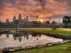 "Angkor Wat, Cambodia.  Meaning ""City Temple,"" it's an ancient temple complex, it was built for a 12th century king as the capital city.  It's also the largest religious building in the world!"