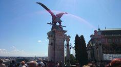 Buda kalesinden Tuğrul kuşu