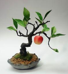Bonsai Trees, Creema, Flower Arrangements, Gardening, Nature, Flowers, Plants, Handmade, Craft