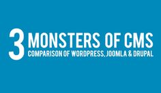 WordPress, Joomla or Drupal: What CMS Should You Use for Your Website? [Infographic]