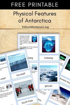 Free Printable Physical Features of Antarctica - Trillium Montessori Montessori Homeschool, Montessori Activities, Activities For Kids, Homeschooling, Continents Activities, Montessori Elementary, 7 Continents, Montessori Classroom, Montessori Toddler