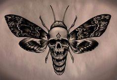 эскизы жуков и бабочек: 8 тыс изображений найдено в Яндекс.Картинках