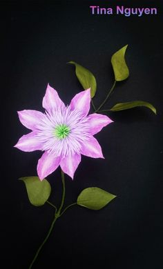 #clematis #paper #flowers