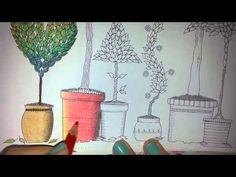 100 Pics Secret Garden+Enchanted Forest+Lost Ocean Johanna Basford - YouTube
