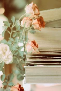 Living in Shabby Chic (blush flowers ana rosa) Peach Trees, Peach Blossoms, Ed Wallpaper, Book Flowers, Blush Flowers, Shades Of Peach, Peach Blush, Peach And Green, Sweet Peach