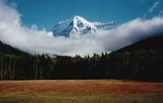 Mount Robson in the Canadian Rockies of British Columbia. Parc National, National Parks, Fun Facts About Canada, West Coast Canada, Gros Morne, Canadian Nature, Alaska Adventures, Canadian Rockies, Parcs