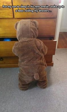 A Cute Bear Broke Into Her Room