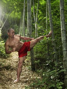 In last week's post I wrote about the 4 essentials for powerful kicks. Here I write about the 4th Essential: Shaolin Iron Leg. Some students believe that if you