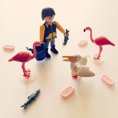 밥먹자! #playmobil #toy #toystagram #flamingo #photo #photostagram #플레이모빌 #플모 #토이 #플라밍고 #토이스타그램