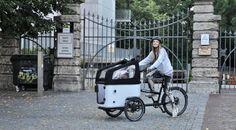 Cargobike - Butchers & Bicycles MK1 Bericht auf susamamma.de #cargobike #mk1 #builttotilt #butchersandbicycles #Lastenfahrrad #cycling