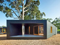 Asymmetrical Karri Loop House is Built Around Indigenous Trees in Australia | Inhabitat - Green Design, Innovation, Architecture, Green Building