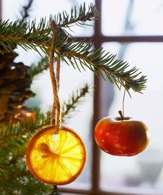 These eco-friendly Christmas tree ornaments can be tossed in the compost pile after the holidays pass.