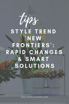 New Frontiers: rapid change, smart solutions, and sensory effects Beautiful Flowers Pictures, Flower Pictures, High Tech Gadgets, Uk Homes, Lilac Flowers, Foliage Plants, Container Plants, Houseplants