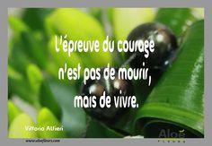 Citation Poème DeuilL'épreuve Du Courage N'est Pas De Mourir, Mais De Vivre. Citation Courage, Bon Courage, Messages, One Life, Images, Phrases, List, Keep Calm, Culture